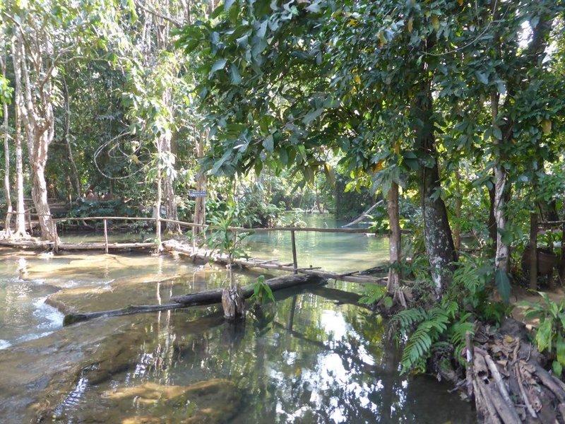 the Everglades look