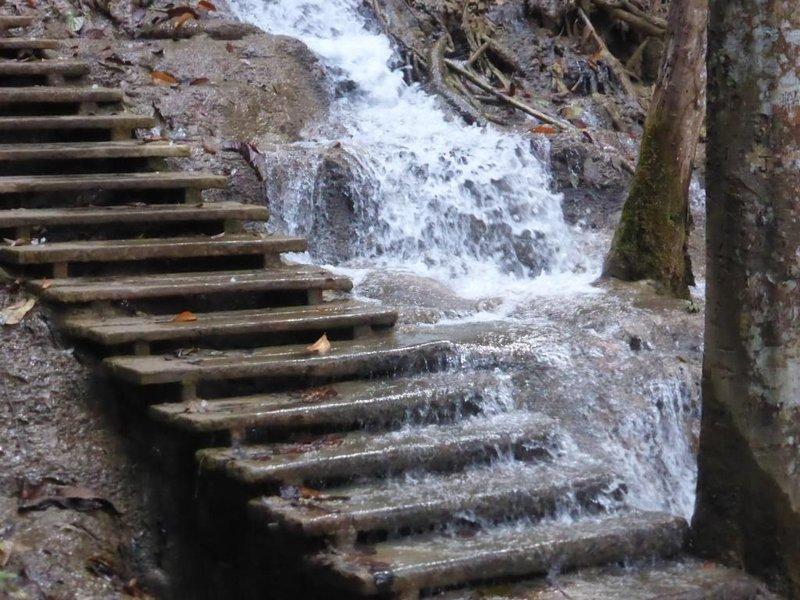 the water does not nicely follow the picturesque path, but pours down everywhere