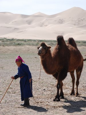 Gobi - Woman with camel