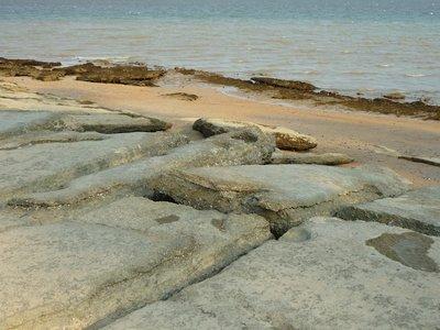 a többszázéves kagylótemető