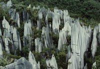 The Pinnacles of Mulu