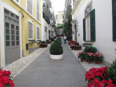 Alley in Senado Square