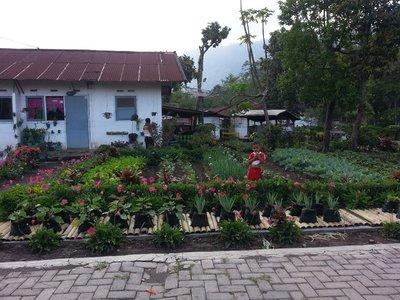 Pretty garden in Kalisat village
