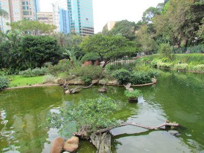 Park among high rise buildings