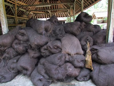 Black ijuk fibers for Balinese temple roofs