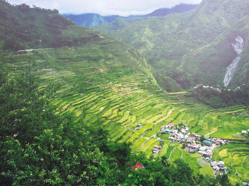 Rice terraces in Philippines