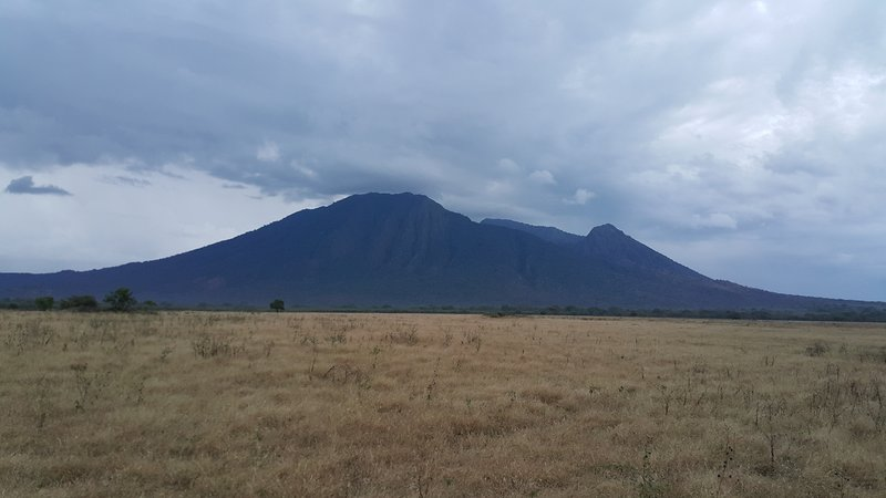 Savanah of Baluran National park