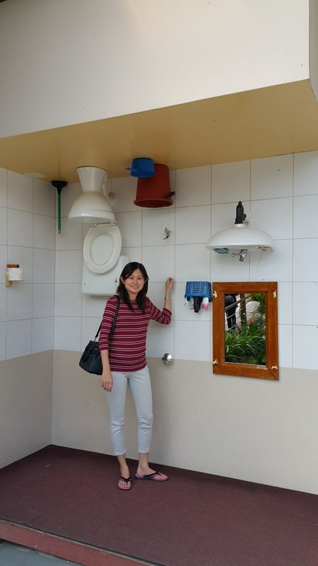 Upside down toilet