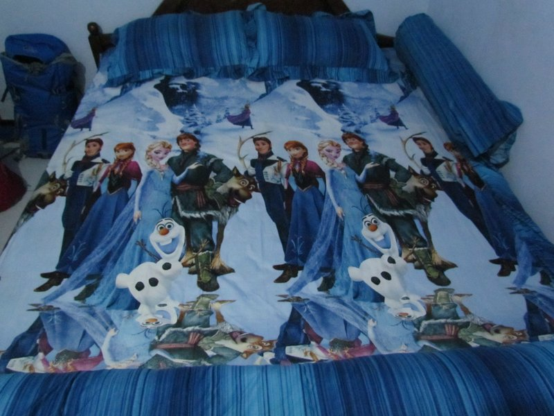 Frozen bedsheet