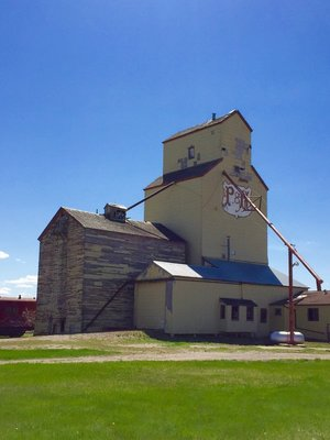 Prairie Giant!