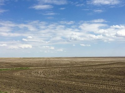 BIG SKY Alberta Prairie
