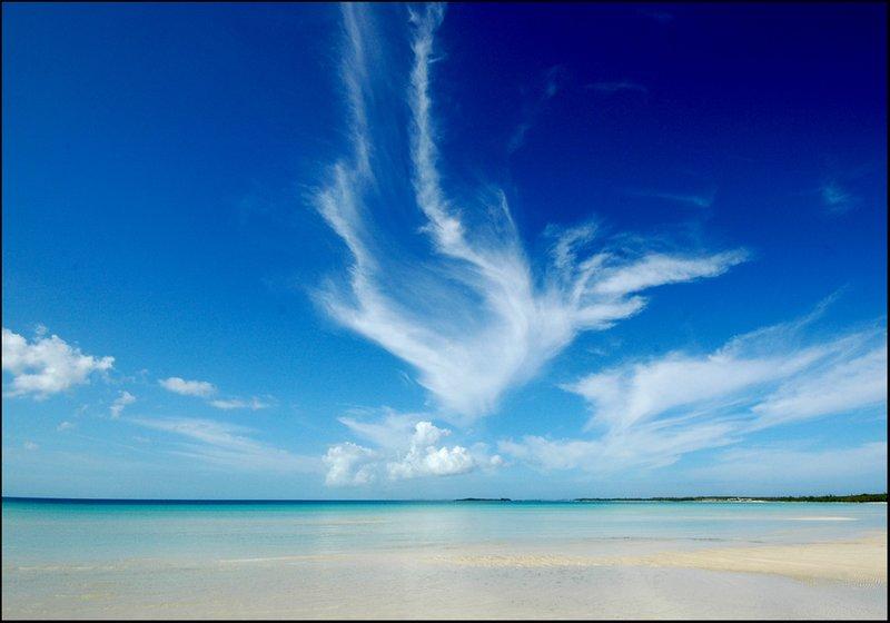 Carribean sea