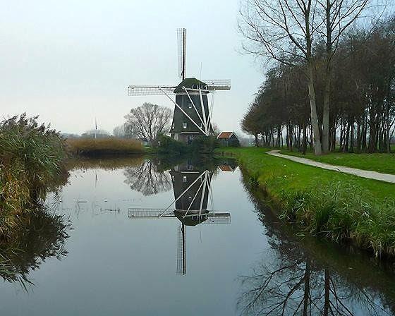 Molen De 1100 Roe, Amsterdam, Netherlands 2010 - Amsterdam