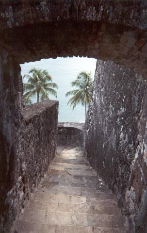 A WIEW FROM THE FORT - Martinique