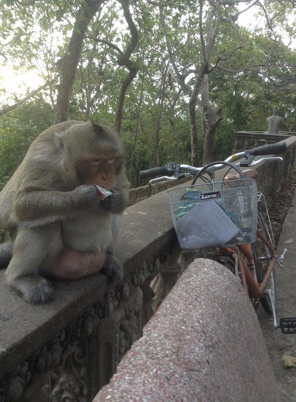 Monkey jerk