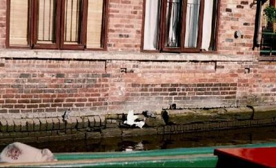 Houses along canal - Worcester