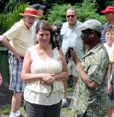 Monkey for photos - Grenada