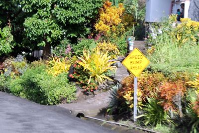 Speed bump sign by a drainage ditch - Grenada