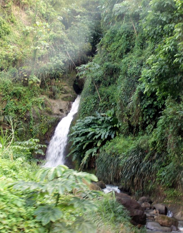 Waterfall from the road - Grenada