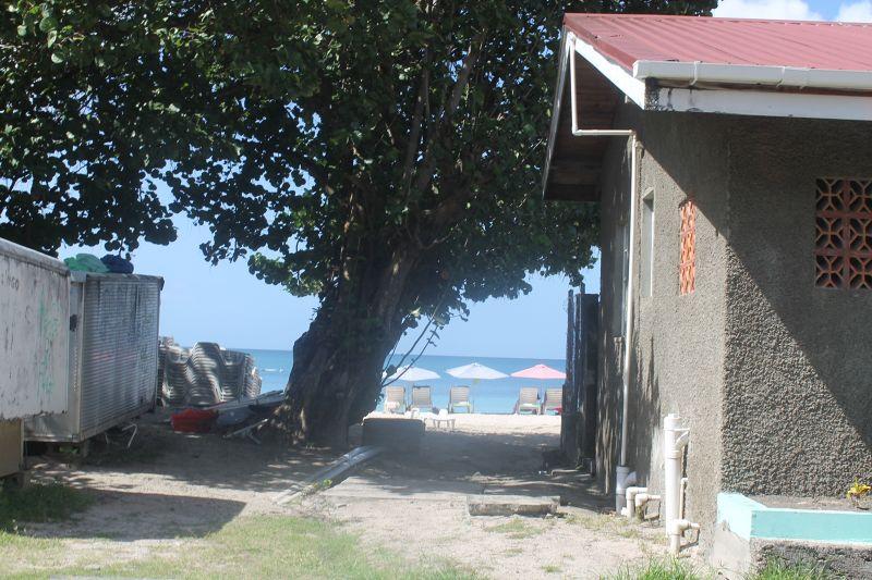 Umbrellas on the beach - Grenada