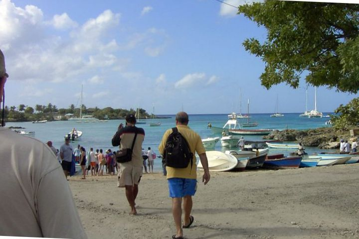 large_Saona_8-9-..10-07-38_PM.jpg