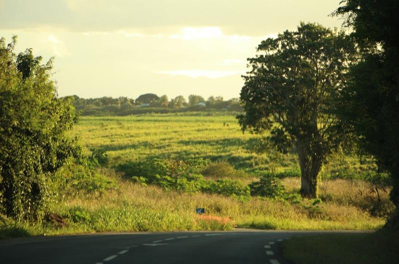 Rolling hills around Port-Louis