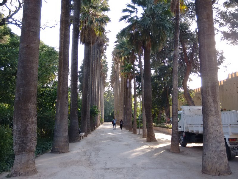 Jnan Sbil arboretum, Fes, Morocco.
