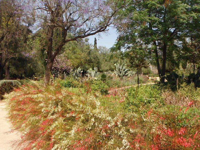 Jnan Sbil Gardens, Fes, Morocco.