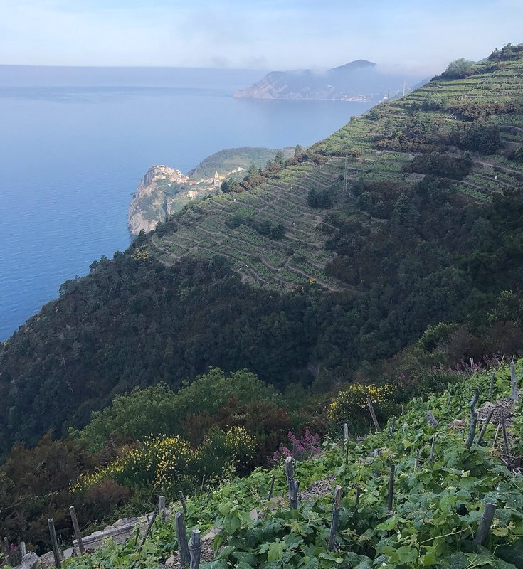Vernazza on 5Terre trail