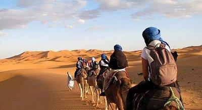 Moroccan Sahara