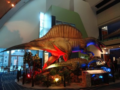 Dinosaurs in Townsville Museum
