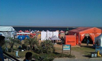 Zebra Festival - concerts on the beach