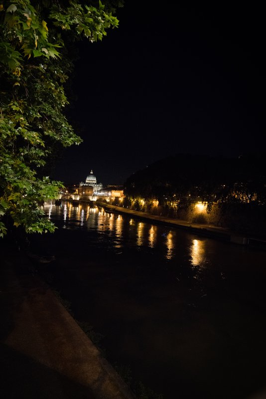 View of St. Peter's Basilica