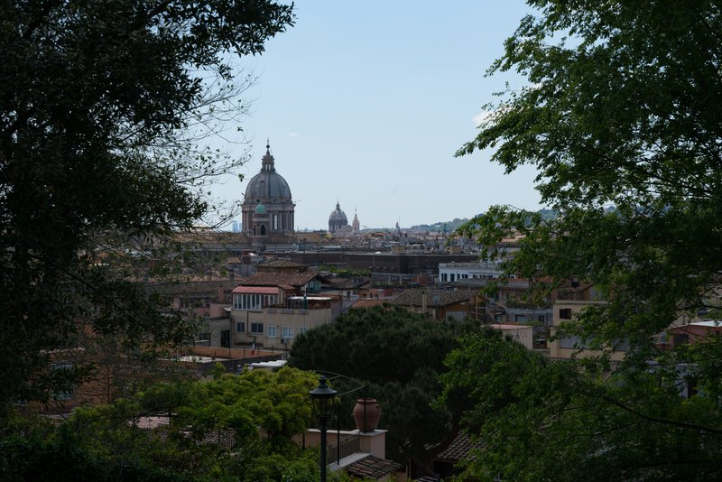 View of St. Peter's Basilica from Borghese Gardens