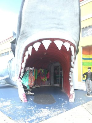Shark04.jpg