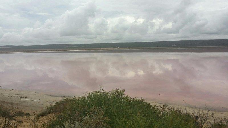 large_19_Pink_lake_2.jpg