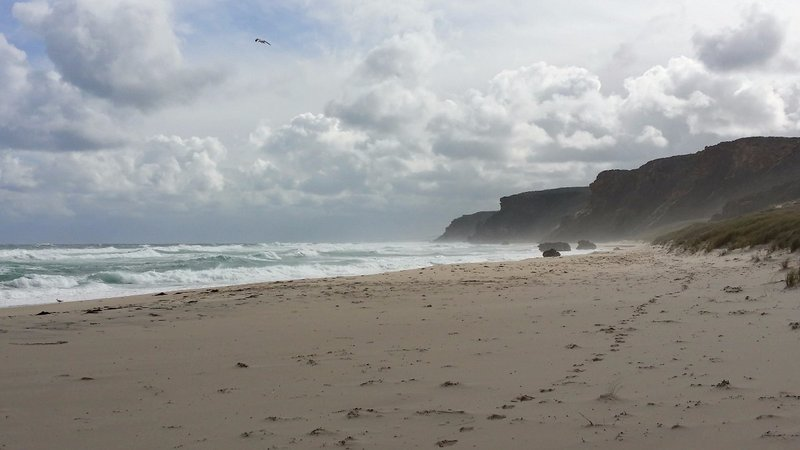large_Salmon_beach2.jpg