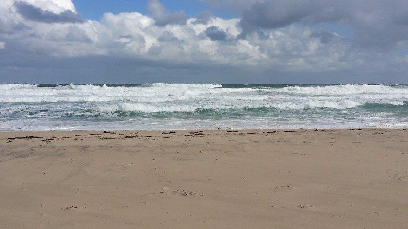 large_Salmon_beach4.jpg