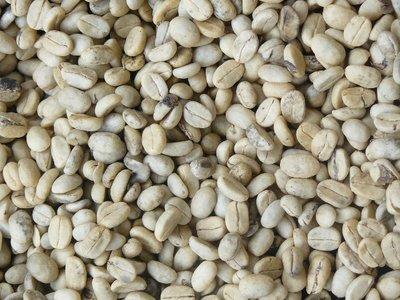 dehusked coffee beans