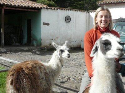 Llama ride
