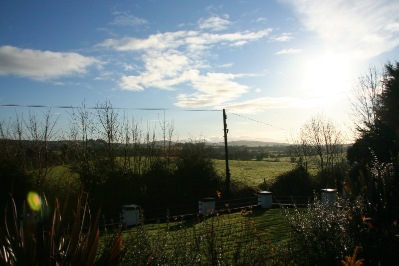 Sunny Christmas morning in Limerick