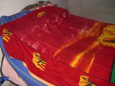 My bed in the Inca village