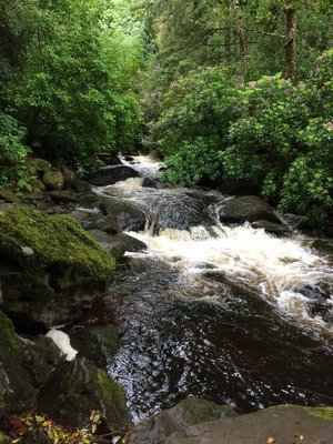 Torc waterfall at Muckross House Gardens Killarney