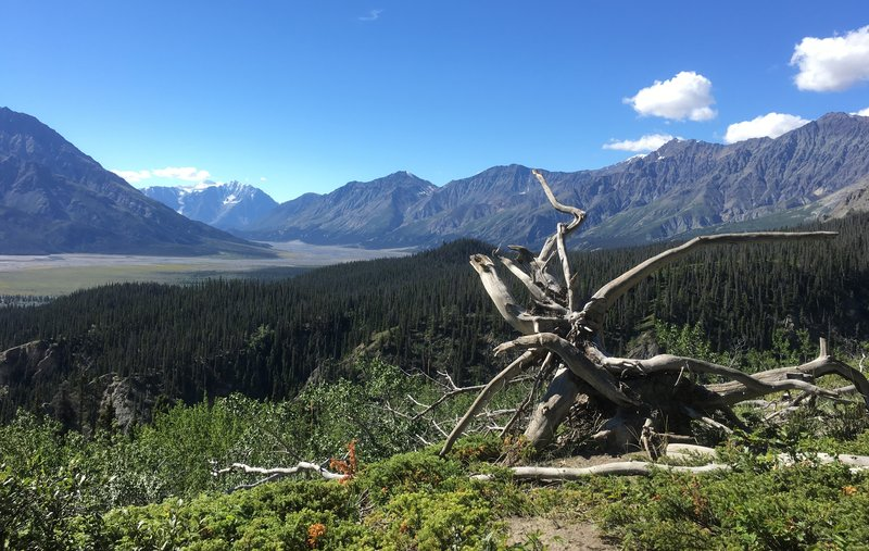 Sheep Creek Mountain