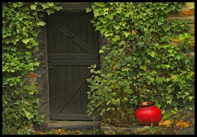 Ivy Wall_Green Door_Red Pot