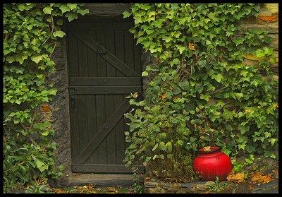 Ivy Wall_Green Door_Red Pot