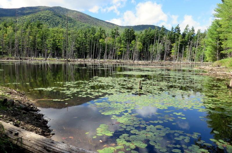 Ausable River Flume Trail