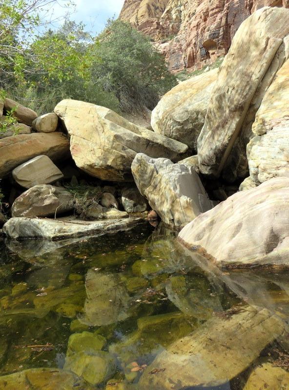 Water in the Desert!