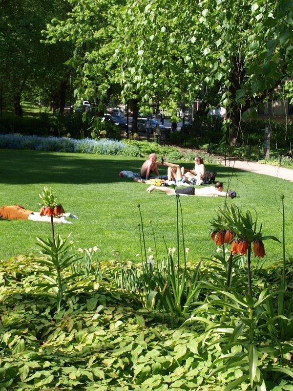 Hot day in Slottsparken!