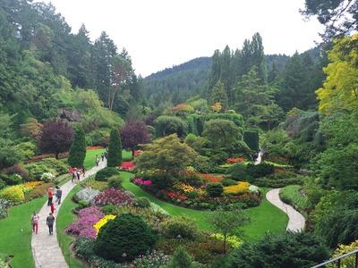 The Butchart Gardens 'Sunken Garden'